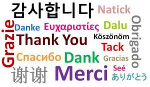 Jasa Penterjemah Bahasa